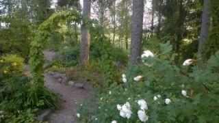 Rosendalen1